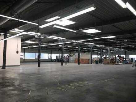 Halle 2400 m² + Wohnung - 3 Optionen!