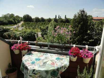 ToFa: Über den Dächern von Drais... tolle Maisonettewohnung mit 2 Loggien + TG-Stellplatz+EBK