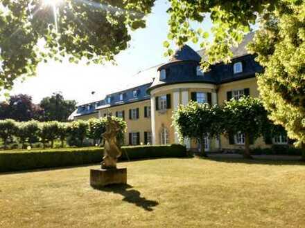 Märchenschloss im Weingebiet nahe Weimar