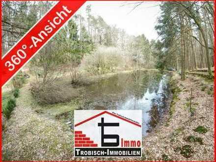 Weiher - Waldidylle - Freizeitgrundstück bei Pirmasens | Trobisch-Immobilien