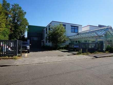 PROVISIONSFREI Bürokomplex mit Ausstellungsfläche und Hallen-Werkstattfläche zu vermieten.