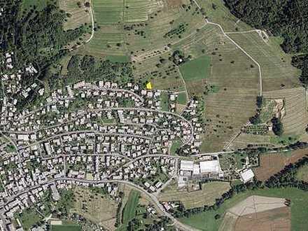 Landwirtschaftsfläche - angrenzend an Wohnsiedlung