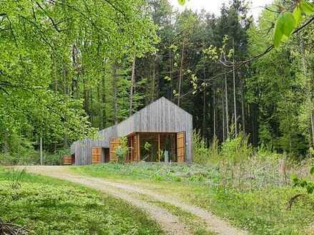 Modernes Architekten-Haus fürs Wochenende mit eigenem Wald - nur 10 Min. nach Regensburg