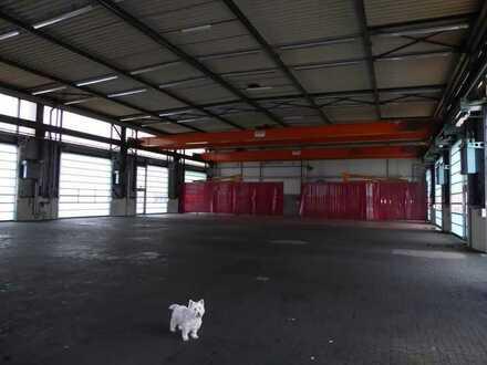Hohe Halle für Busse, LKW Reparatur, Lager Logistic, Umschlag