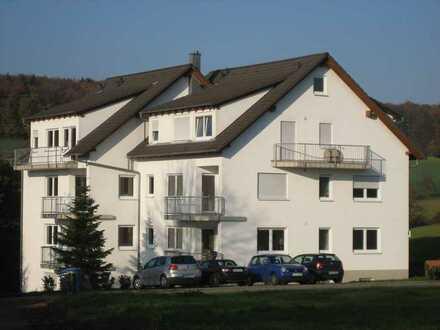 Vollständig renovierte 3-Zimmer-EG Wohnung mit Balkon und Einbauküche in Elztal