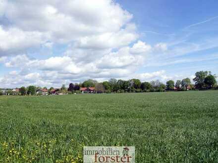 Spekulatives Bauerwartungsland mit ca. 16.600 m² Grund