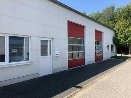 Neuwertige, kleine Halle mit Sektionaltor, geeignet als Lager Werkstatt oder Servicefläche