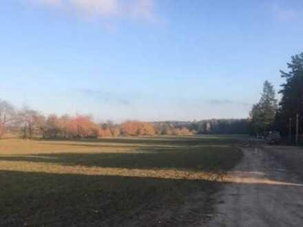 Großzügige Baugrundstücke in der Naturparkstadt Biesenthal