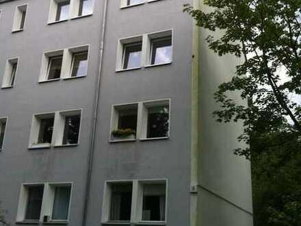 Bild_4 Zimmer Wohnung in Bad Saarow zu vermieten