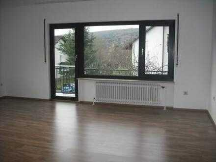 Vollständig renovierte helle 4-Zi-Wohnung m. Balkon u. eig. Gartenanteil EBK in Bad Soden-Salm.