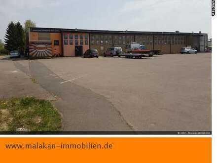 Halle für Produktion, Werkstatt, Entwicklung, Verkauf oder Lager in Bitburg