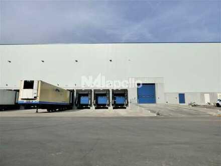Moderne Logistikprojektierung | Nördlich von Wölfersheim | 10 m UKB | PROVISIONSFREI