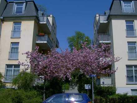 Hübsche kleine 2-Zimmerwohnung im Preußischen Viertel