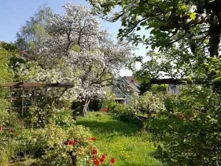 Doppelhaushälfte mit wunderschönem Garten im Erzgebirge