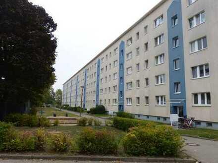 Vermietete 3-Raum Wohnung im 1. Obergschoss