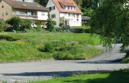 Außergewöhnlich großes Baugrundstück in zentraler Lage von Sulz