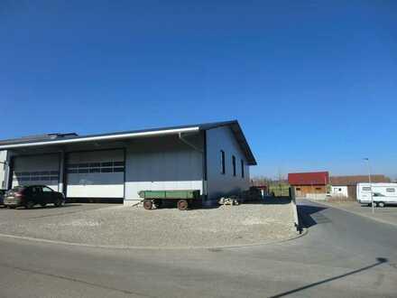 Neuwertige Gewerbehalle, sofort verfügbar, zur Vermietung