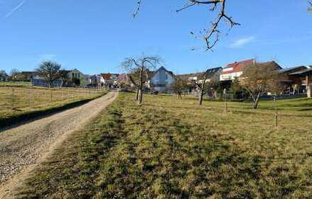 Geräumige 2,5-Zimmer-EG-Wohnung in Altdorf am Feldrand