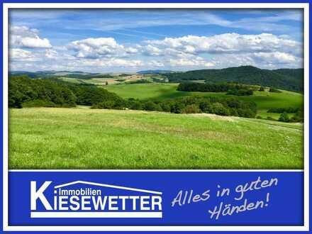 Grundstück mit unverbaubaren Fernblick in Relsberg
