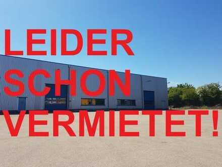 Kaltlagerhalle mit Freifläche in Langenau zu vermieten - in wenigen Minuten auf der A7 oder der A8!