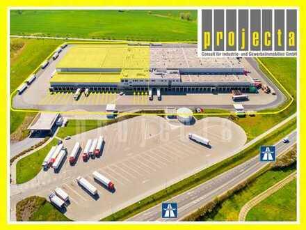 20.000 m² HALLE (TEILBAR AB 5.000 m²) * 10,50m UKB * 0175-290 90 71 *