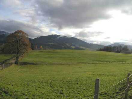 Spekulaltionsgrundstück/Wiese zwischen Kempten und Füssen im schönen Oberallgäu