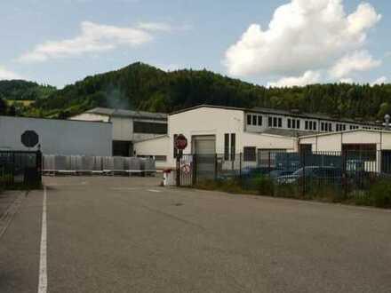**Gut gelegenes Industriegelände mit 4350 qm Hallenfläche in Hausach**