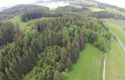 28.673 m² Mischwald mit Scheune bei Velburg