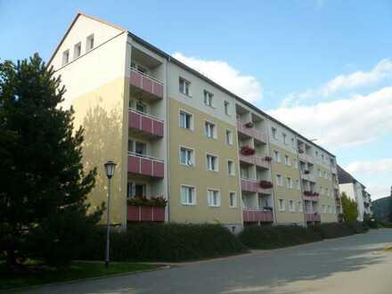 ***kleine helle 1-Raum Wohnung ***