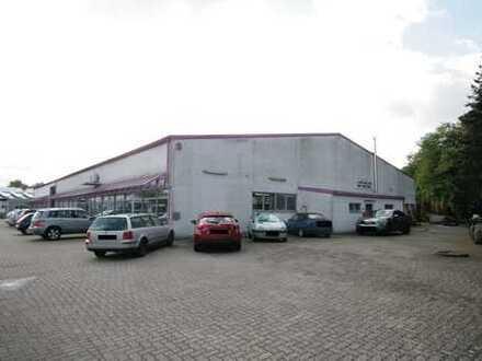 Große Lagerhalle im Gewerbegebiet von Herxheim