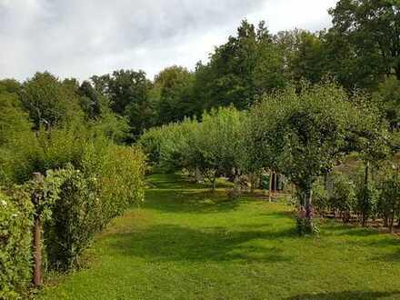 Sonniges Gartengrundstück im Landschaftsschutzgebiet Waldäcker