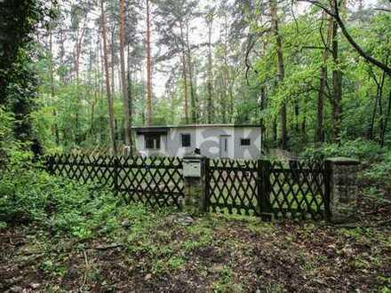 Gefragte Lage im Speckgürtel von Berlin: Wochenendgrundstück mit Altbestand in Wald- und Seenähe