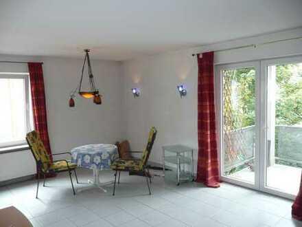 Vollständig renovierte 3-Zimmer-Wohnung mit gehobener Innenausstattung in Mainz-Weisenau