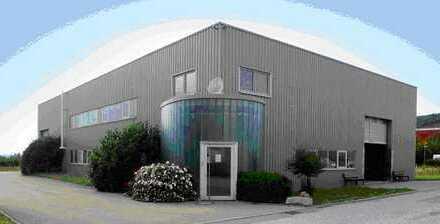 Zentrale Lager-/Produktionshalle mit Krananlage und Büroräume