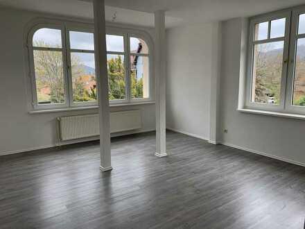 Frisch renoviert! Schlossblick! Großzügige Singlewohnung in Hasserode - Ihr neues zu Hause!!!