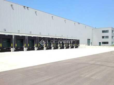 Neubau einer hochmodernen Lagerhalle