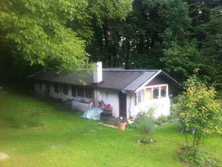Kleines Häuschen, auf 10000qm in Starnberg