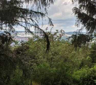 Gepflegter Garten Rotenberg mit Wasser und Parken am Grundstück