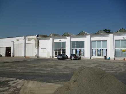 helle, große, geräumige Lagerhalle in Grimma zu vermieten