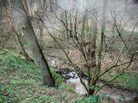 GANESHA-IMMOBILIEN...Waldgrundstück mit Bachlauf zu verkaufen !