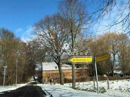 Waldgrundstück in Seelow / Alt Rosenthal
