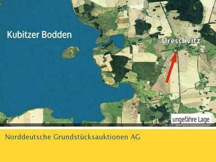 Unbebautes Grundstück in 18573 Dreschvitz/ Insel Rügen, hinter Gingster Chaussee 7