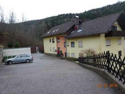 Schöne 4- Zimmer Wohnung in Triberg im Schwarzwald, Waldblick