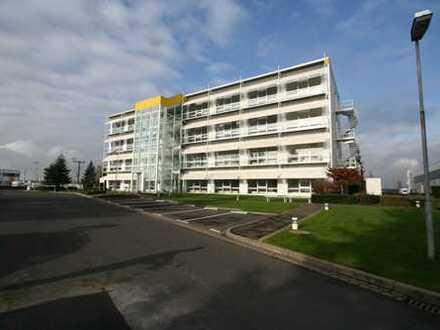 Zwei Etagen (EG und 1. OG, ca. 870 m²): Moderne, helle, klimatisierte Büroräume