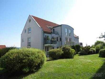 * schöne und helle 2-Zimmer-Wohnung mit Terrasse *