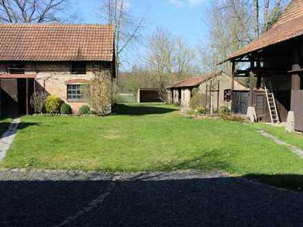 Bauernhof / Resthof: 4ZKB Whg. für Natur- und Tierliebhaber (Kleintiere und Großtiere willkommen)