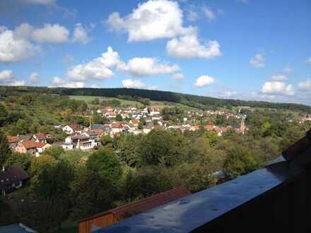 OT Seckmauern 4 Zi.-EG-Wohnung mit Loggia, Balkon, EBK und weiter Aussicht
