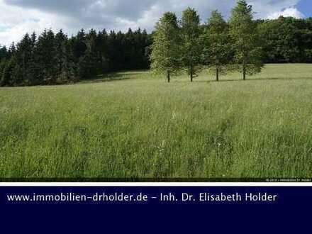 VERKAUFT !!! Viel Grünland und Wald am Stück, Grundstück, Kauf, St. Johann