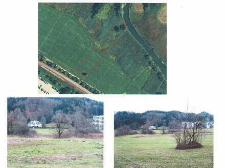 2 Wiesengrundstücke zwischen Viehmarktplatz und kleinem Alpsee
