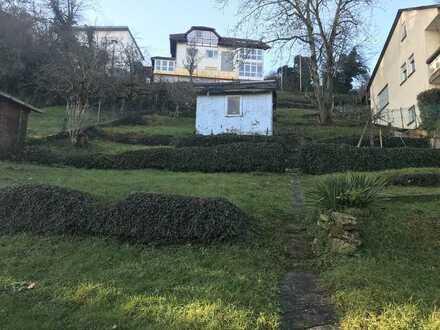 Baugrundstück mit Gartenhaus